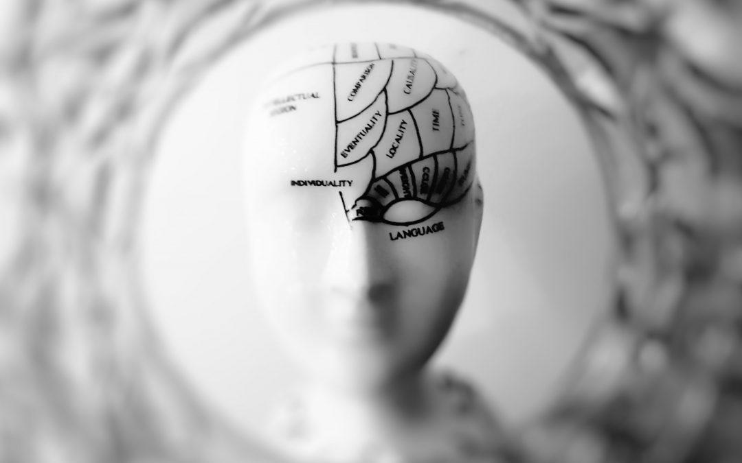 De beste BI-besluitvorming en de invloed van ons eeuwenoud instinct